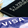 F-1 visa scam: owner of four California schools plead guilty to immigration fraud