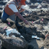 Study claims humans reached the Americas 130,000 years ago